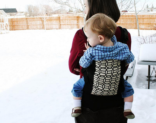 The Sweet Pod Baby Carrier